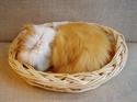 Billede af Sovende kat i kurv gylden