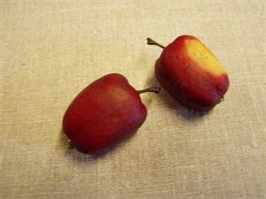 Billede af Æble stor